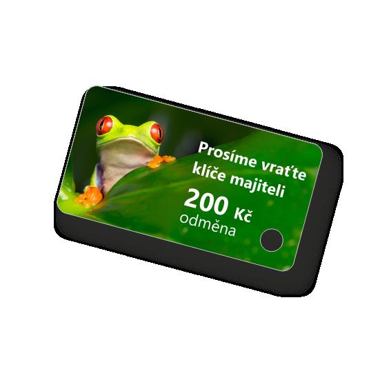 Plastová klíčenka s motivem (žába)